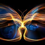 the-butterfly-effect-has-changed